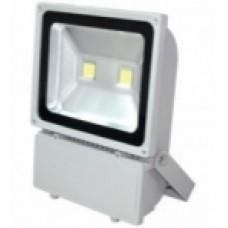 Прожектор 100W Білий холодний 01300132